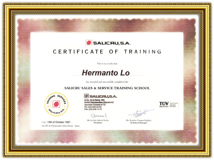 stabilizer-yoritsu-cert_technical_training_Salicru1.jpg